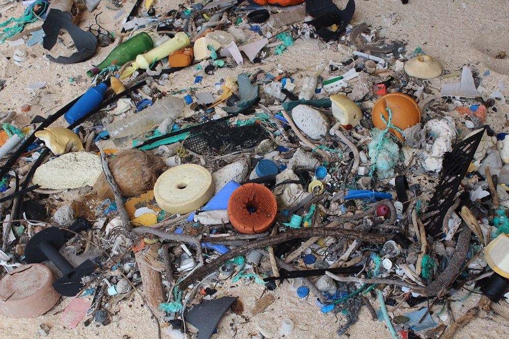 Plastic litter on East Beach, Henderson Island